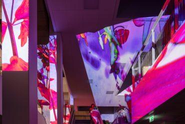 Pipilotti Rist har skabt nyt lysende vartegn til Aarhus